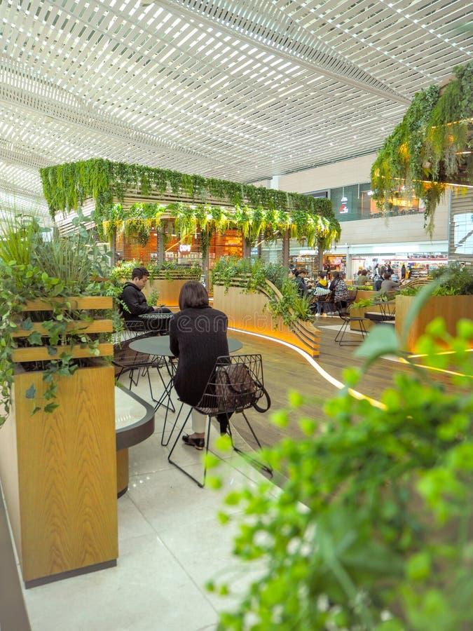 Maj 2018 - Sydkorea: Mysigt och frodigt placera område med talrika gröna växter i terminal 2 av Incheon den internationella flygp arkivfoton