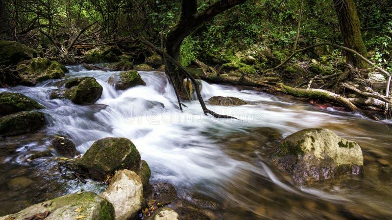 Majaceite-Fluss-EL Bosque Cadiz Spanien lizenzfreie stockfotografie