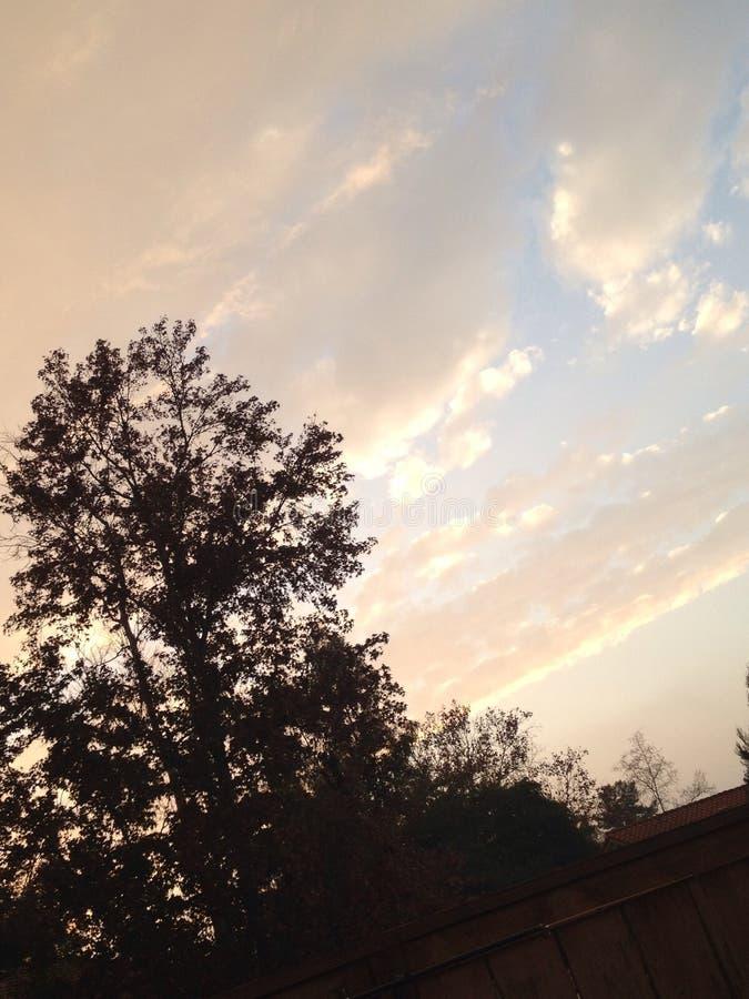 Majestätische Himmel stockbild