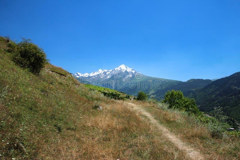 Majestätisk sikt av alpina ängar med blå himmel på foten av Tetnuld royaltyfri foto