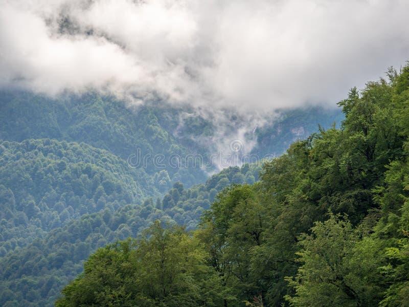 Majestätisk sikt av gröna berg med en vattenfall och maxima i tjock dimma fotografering för bildbyråer