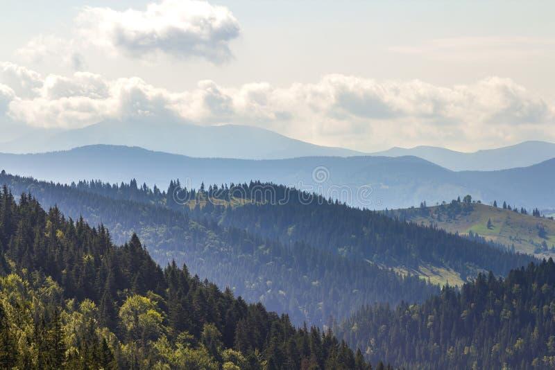 Majestätisk sikt av storartade Carpathian berg som täckas tätt med den gröna skogen, Ukraina Dimmiga bergkanter i avstånd, arkivfoton