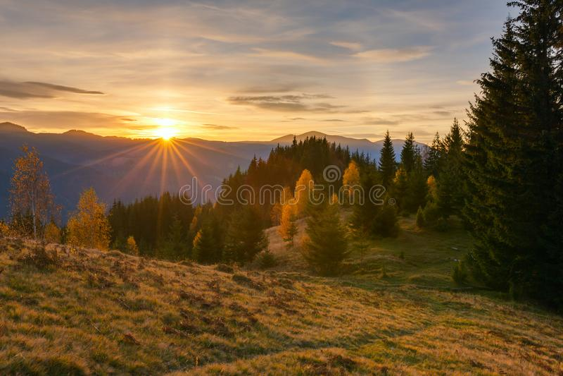 Majestätisk soluppgång i landskapet för Carpathian berg royaltyfria foton