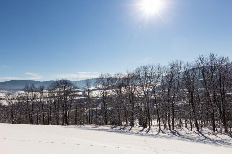 Majestätiskt vinterlandskap som glöder vid solljus i morgonen Dramatisk vintrig plats royaltyfria bilder