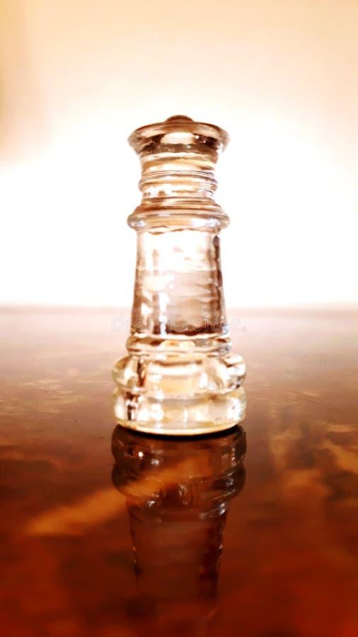 Majestätkonungen av schack royaltyfria foton