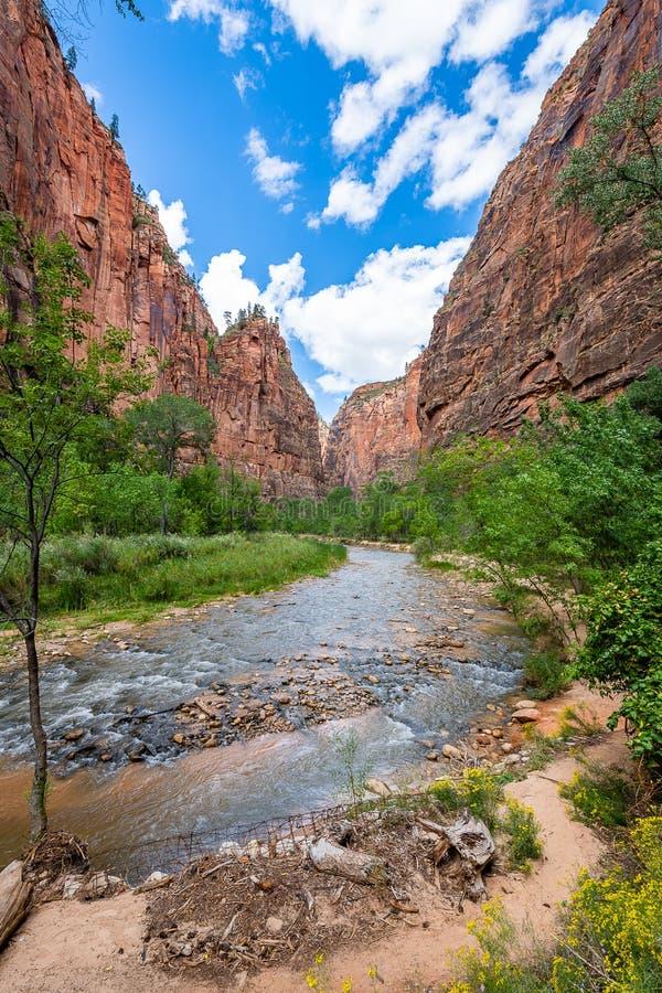 Majestat Zion park narodowy zdjęcie stock