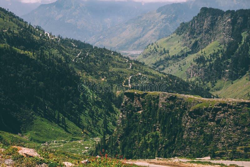 majestatyczne góry zakrywać z zielonymi drzewami w Indiańskich himalajach, obraz royalty free