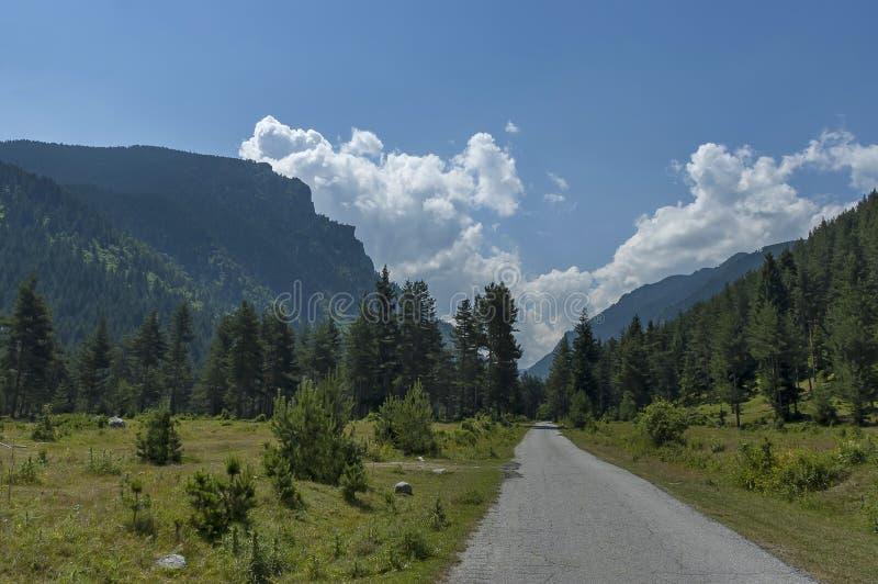Majestatyczny halny odgórny przerastający z iglastym lasem, doliną, halizną i drogą, Rila góra zdjęcie royalty free