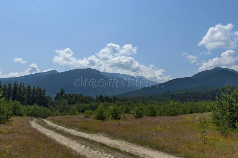 Majestatyczny halny odgórny przerastający z iglastym lasem, halizną i ścieżką, Rila góra fotografia royalty free