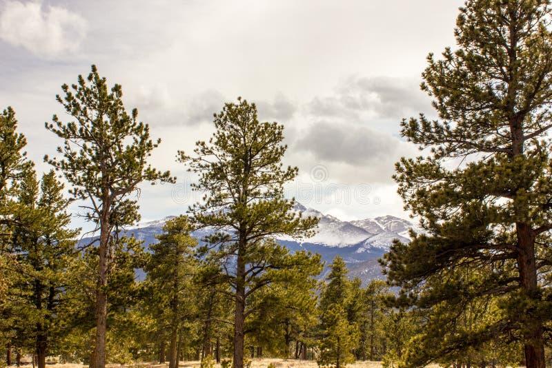 Majestatyczny widok Skalistej góry park narodowy, Kolorado, usa obraz royalty free