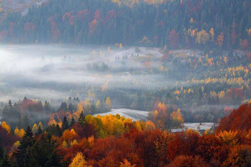 Majestic autumn rural scenery. Landscape with beautiful fields and forests covered with morning fog. Resort Carpathian. stock images