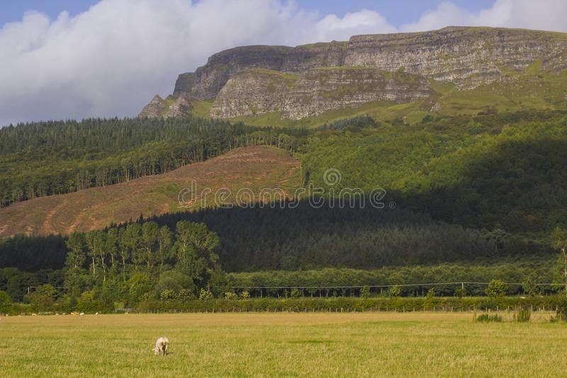 The majestic Binevenagh mountain summit near Limavady in County Londonderry on the North Coast of Northern Ireland. A viewing point at the top presents royalty free stock image