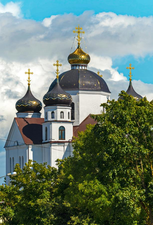 A majestic church with white walls and large domes with golden crosses glistening in the sun, standing among green trees royalty free stock images