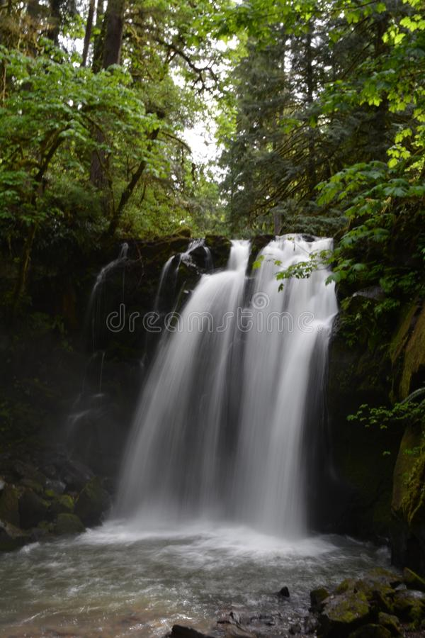 Majestic Falls, McDowell County Park, Oregon: Aperature Priority royalty free stock photos