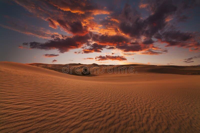 Majestic fiery sunset in the Gobi Desert. Mongolia royalty free stock photo