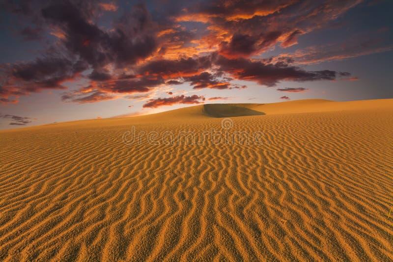 Majestic fiery sunset in the Gobi Desert. Mongolia royalty free stock photos