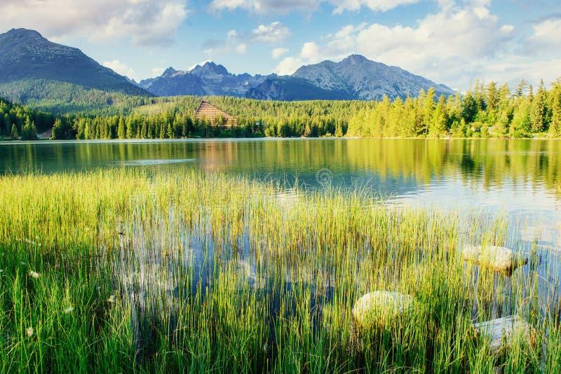 Majestic mountain lake in National Park High Tatra. Strbske ples. O, Slovakia, Europe stock image