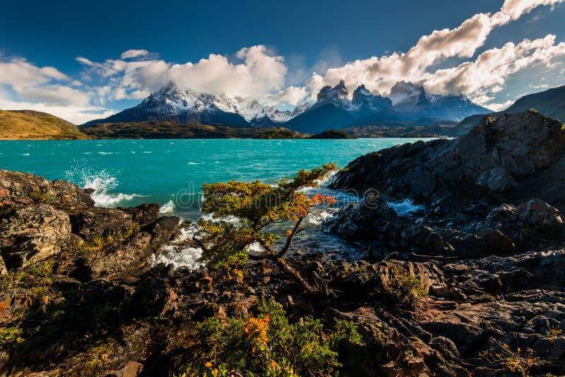 Majestic mountain landscape. National Park Torres del Paine, Chile stock photo