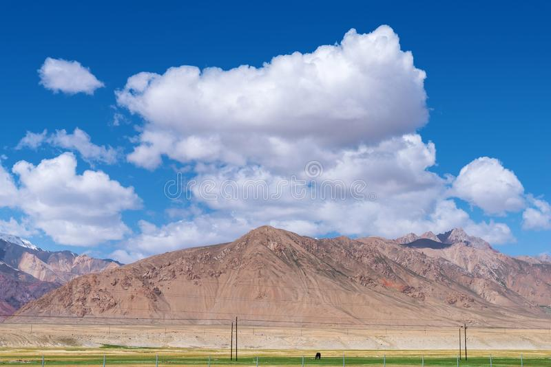 Majestic mountains and horse on meadows in Pamirs plateau. Majestic snow-capped mountains peak with cloudy blue sky in Pamirs plateau,alone black horse grazing royalty free stock image