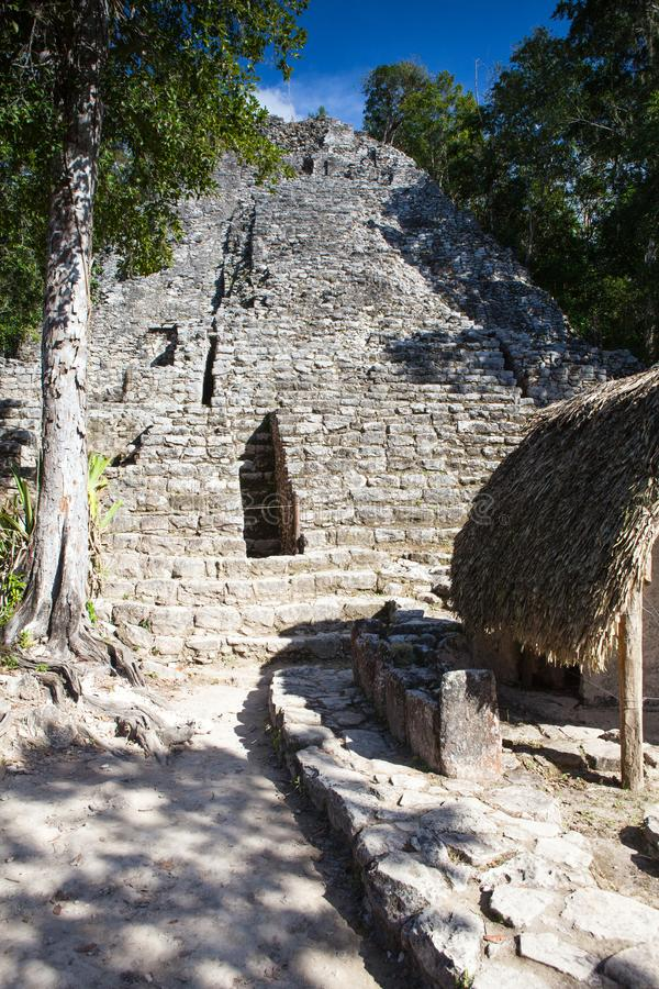 Majestic ruins in Coba, Mexico. stock photos