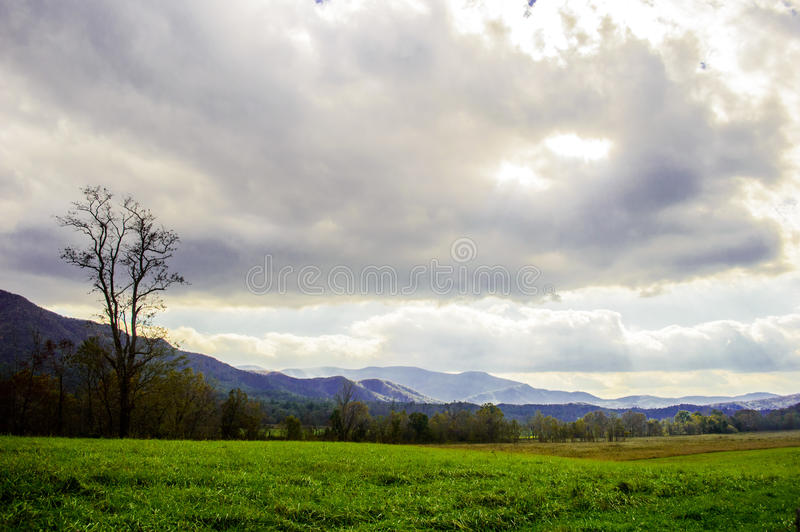 Majestic smoky mountains stock images