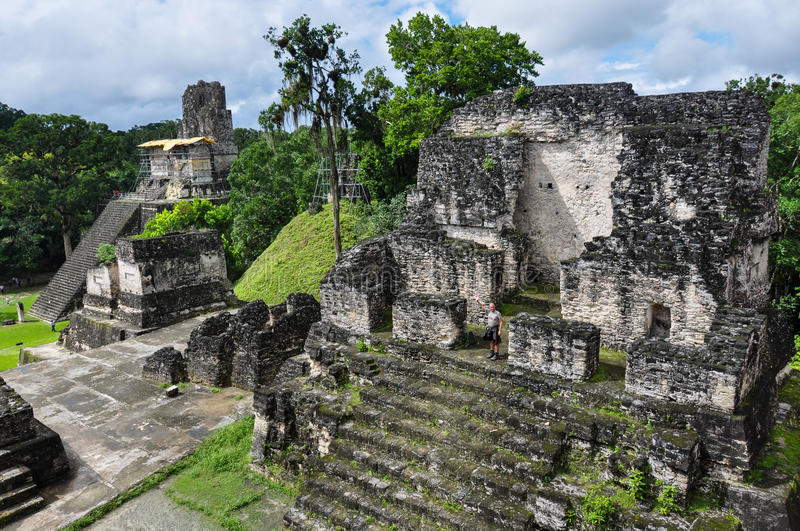 Majestic Tikal Ruins, in Guatemala stock photos
