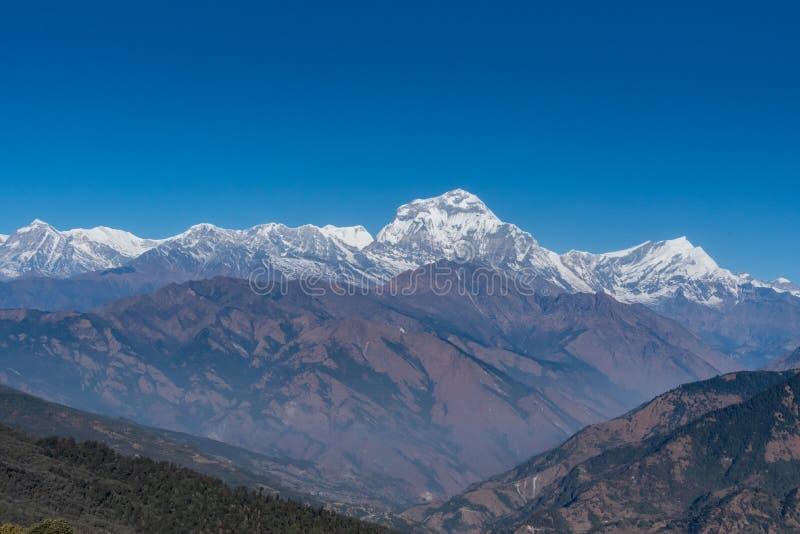 Majestic view of Dhaulagiri mountain range seven highest Pokhara Nepal.  stock image