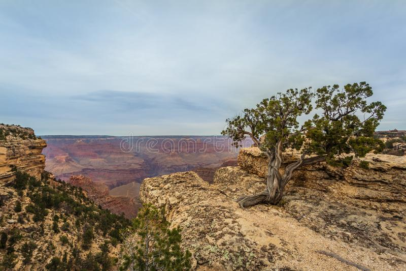 Majestueus Grand Canyon, Arizona, Verenigde Staten stock afbeelding