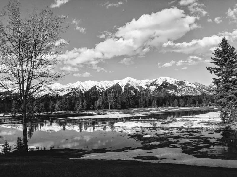 Majestueus Montana Mountains stock afbeelding