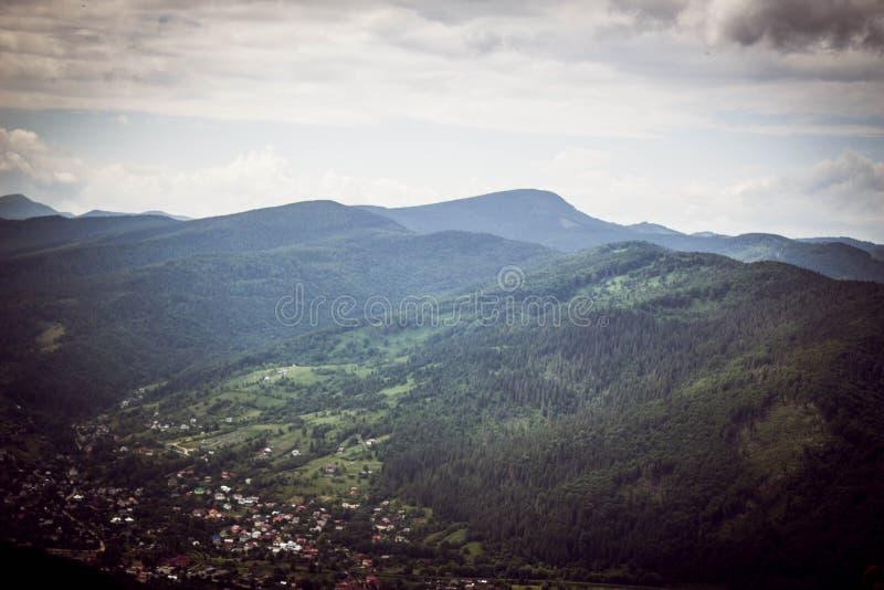 Majestueuze Karpatische die bergen met naaldbomen worden behandeld stock afbeelding