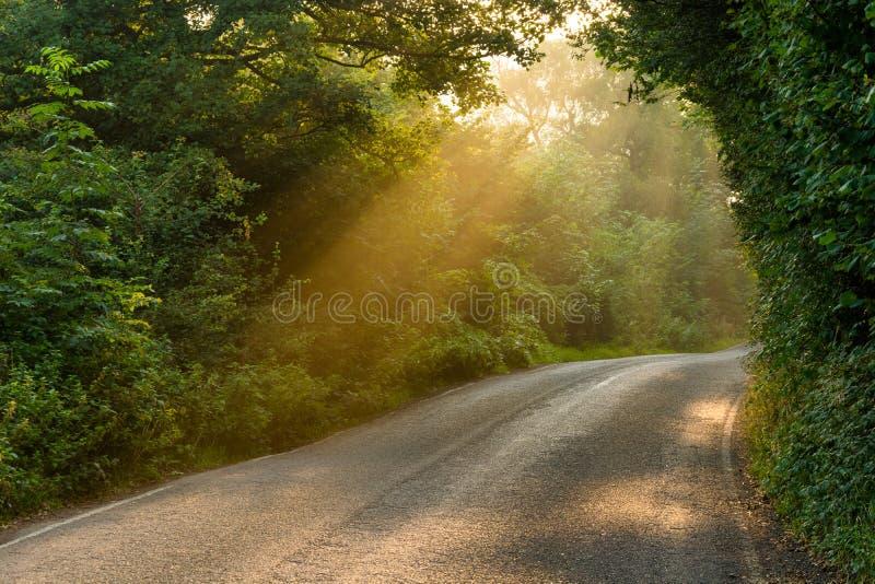 Majestueuze Landweg met Gouden Stralen van Licht stock fotografie