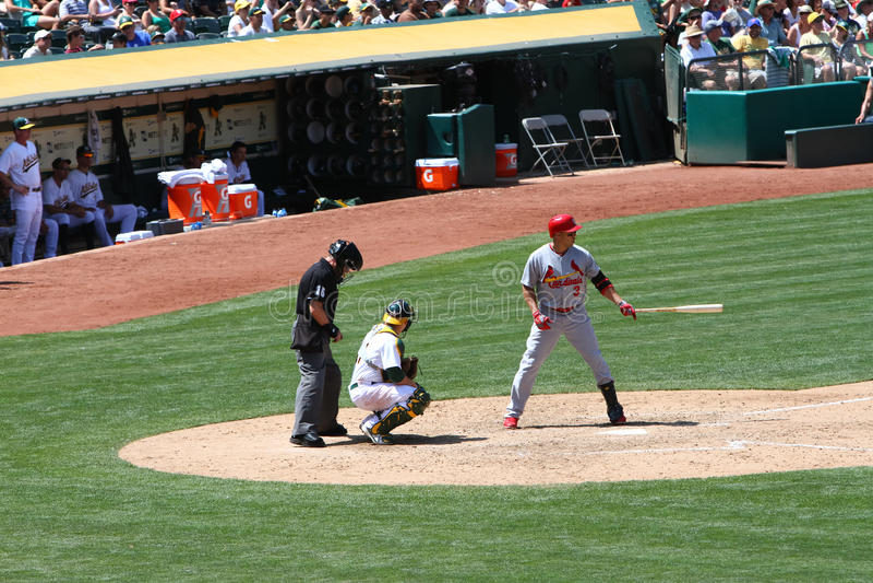 Major League Baseball - Beltran prepara-se para bater foto de stock royalty free