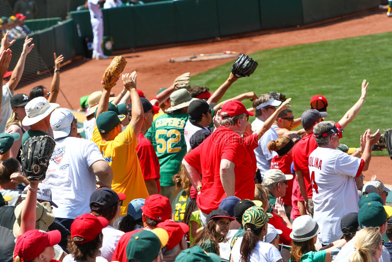 Major League Baseball - fans frågar för en boll arkivbild