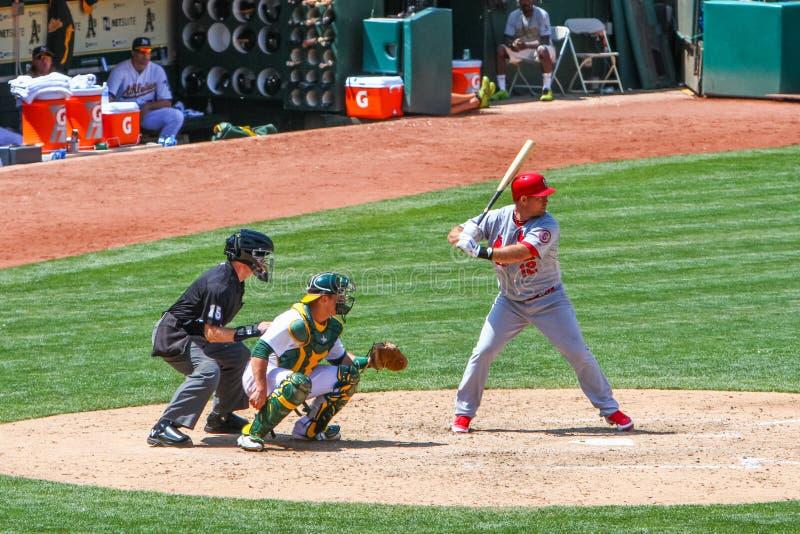 Major League Baseball - smet Ty Wigginton royaltyfria bilder