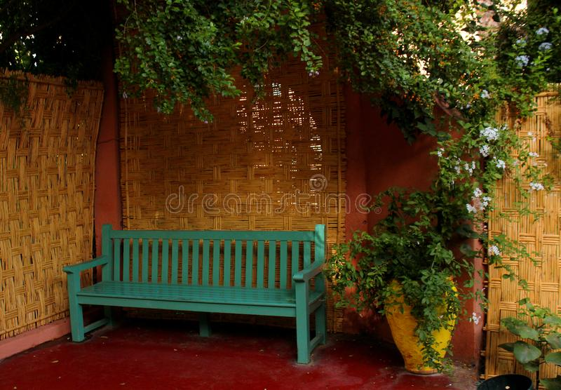 Excellent Majorelle Garden A Bench Below A Tree And Potted Plants Squirreltailoven Fun Painted Chair Ideas Images Squirreltailovenorg