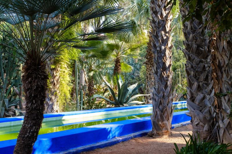 Majorelle Garden in Marrakech, Morocco. Long pool within the beautiful Majorelle Garden, also know as the Yves Saint Laurent`s Garden, in downtown Marrakech royalty free stock photography