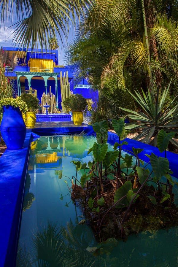 Majorelle ogr?d w Maroko zdjęcia royalty free