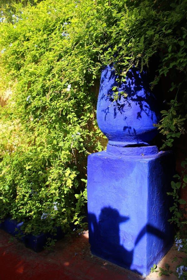 Majorelletuin - groene vegetatie en een bloempot in typische blauwe kleur royalty-vrije stock foto's