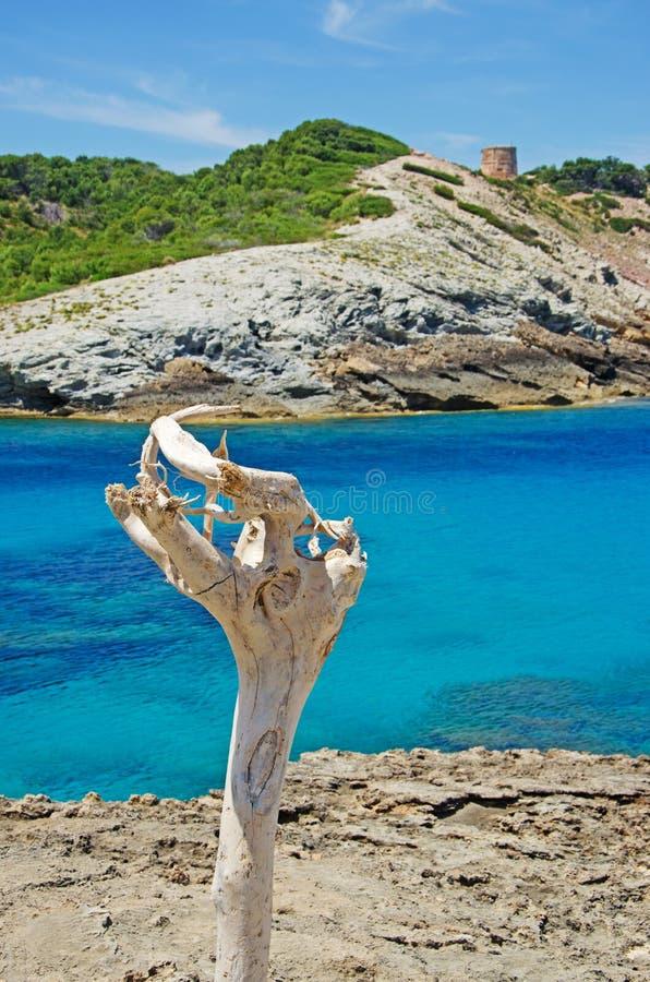 Majorque, Majorca, Îles Baléares, Espagne photographie stock