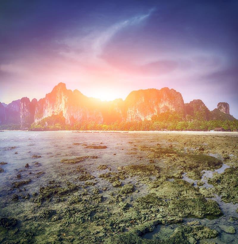 Majowia Phi phi leh podpalana wyspa Tajlandia obraz stock