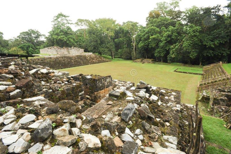 Majski archeologiczny miejsce Quirigua fotografia royalty free