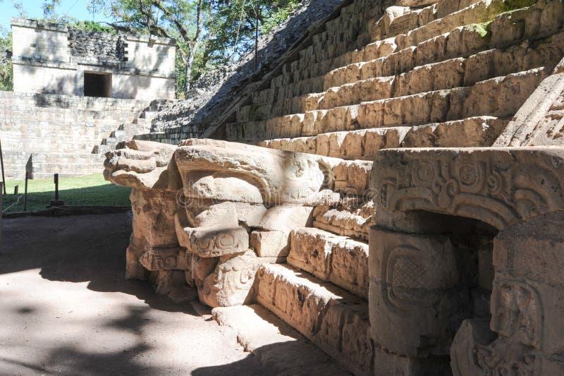 Majskie ruiny Copan obraz royalty free