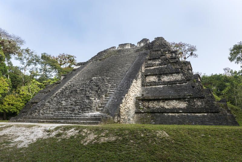 Majskie ruiny Tikal w Gwatemala fotografia stock