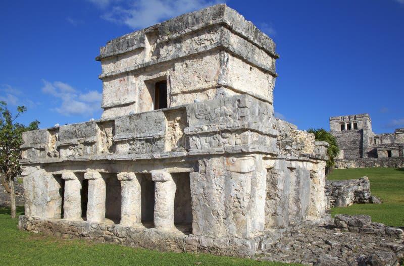 Majskie ruiny w Tulum, Meksyk obraz royalty free