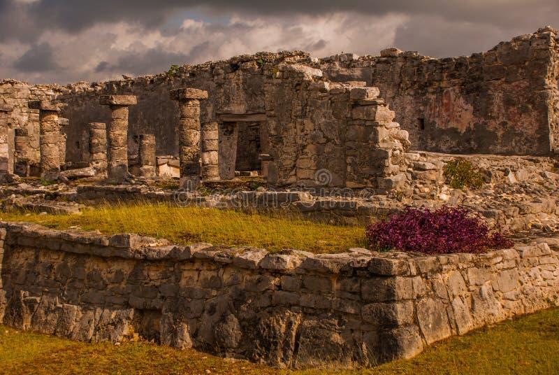 Majskie ruiny w Tulum, Meksyk, Riviera majowie, Jukatan Tulum był jeden ostatni miasta budujący i zamieszkujący majowiem zdjęcie stock