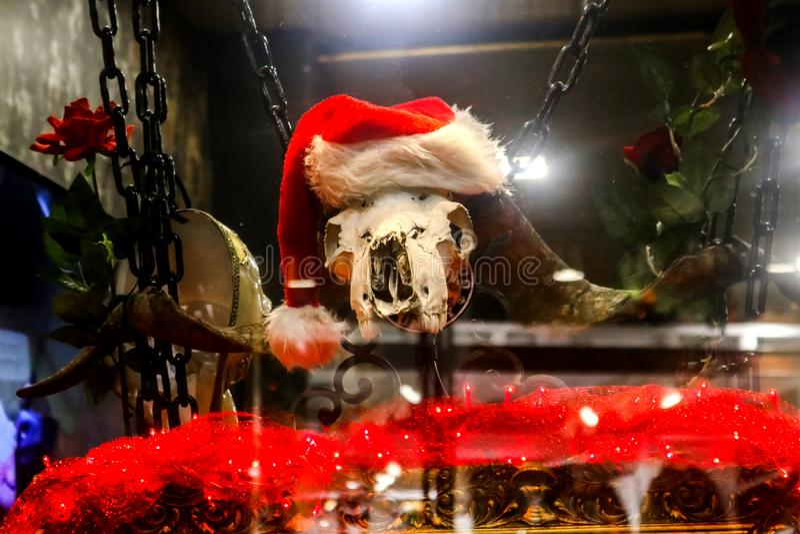 Makabryczni ciemni boże narodzenia displaly w Greckim sklepu okno z dziwaczną zwierzęcą czaszką w Bożenarodzeniowym kapeluszu wys obraz stock