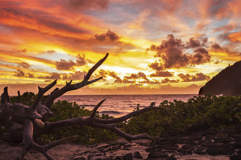 Makapuu-Sonnenaufgang lizenzfreie stockfotos