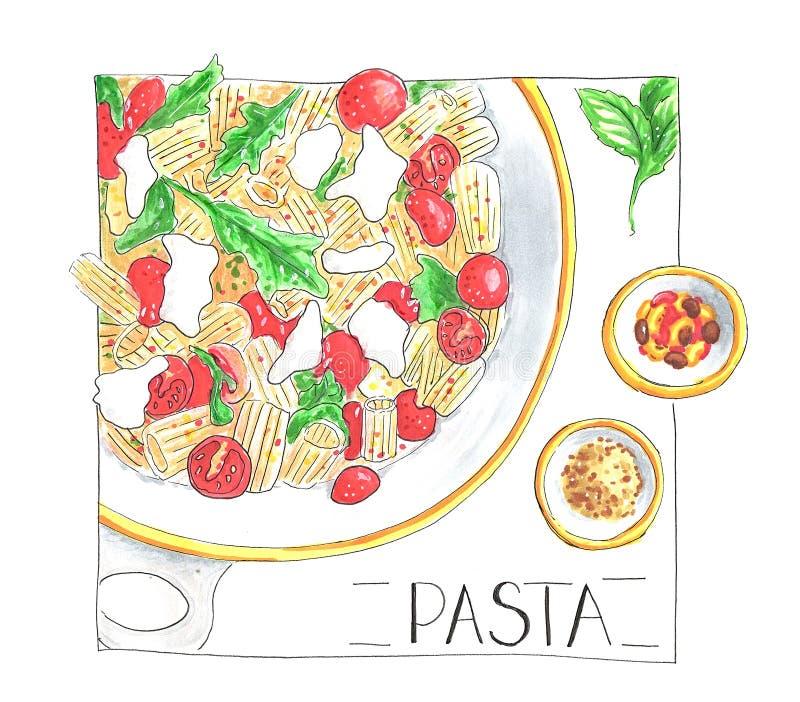Makaronu naczynie z sauses i liść odizolowywający basil wręczamy patroszoną ilustrację ilustracja wektor