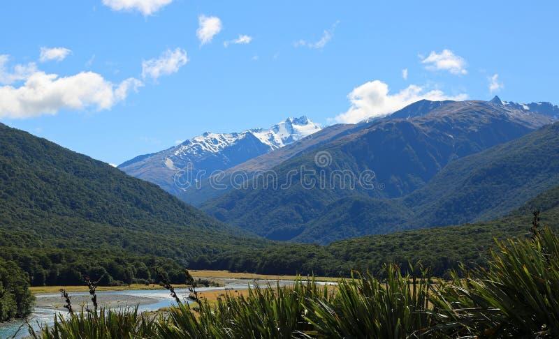Makarora dolina zdjęcie stock