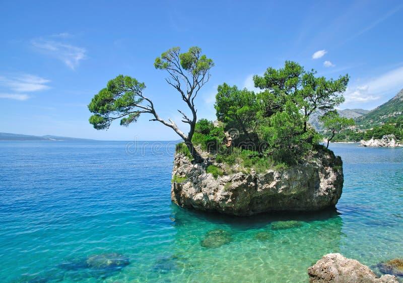 makarska riviera Хорватии dalmatia brela стоковое фото